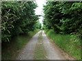 SM9733 : Track  to Pantywrach by ceridwen