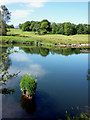 NY3303 : The River Brathay just downstream of Elter Water by Karl and Ali