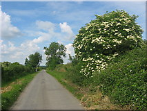 N7578 : Country road at Mullaghey, Kells by Kieran Campbell
