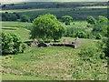 NS7681 : Tappetknowe Ruins by Robert Murray