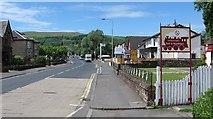 NS3881 : Balloch Road by Richard Webb