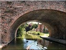 SU3368 : view through Hungerford Bridge by Paul Gillett