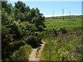 NS3778 : Footpath around Carman Reservoir by Lairich Rig