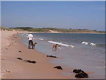 NU2422 : Dog walking at Embleton Bay by Oliver Dixon
