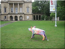 ST7565 : Pig and Museum by David Roberts