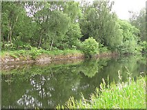 NS8680 : Forth and Clyde Canal by Richard Webb