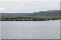 HU5489 : Rana, Vatsetter by Mike Pennington