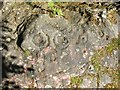 NS8181 : Cup-and-ring marks on rock outcrop by Lairich Rig