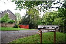 TQ3472 : Peckarmans Wood by N Chadwick