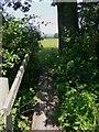 SU8519 : Small footbridge north of Bepton by Shazz