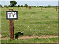 TF8429 : Horses that bite - at Manor Farm, Coxford by Evelyn Simak