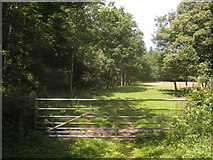 TQ4540 : Gate near Clay's Wood by David Anstiss