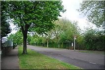 TQ3770 : Bus Stop, Worsley Bridge Rd by N Chadwick