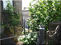 NT9953 : Berwick Townscape : A Means of Escape onto the Town Walls by Richard West