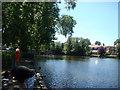 TQ5189 : Lake in Raphael Park, looking back to the Main Road bridge by Robert Lamb