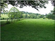 SP1726 : Follow the field edge by Michael Dibb