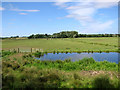TM4591 : Marsh pastures north of the River Waveney by Evelyn Simak