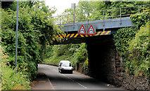 J4681 : Railway bridge, Helen's Bay (2) by Albert Bridge