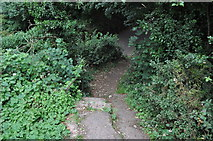 SS9412 : Tiverton : Steps to Baker's Hill by Lewis Clarke