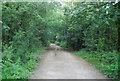 TQ5746 : Cycleway or Footpath? by N Chadwick