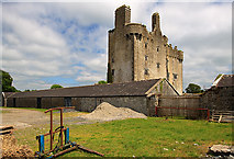 R9693 : Castles of Munster: Killaleigh, Tipperary (4) by Mike Searle