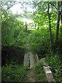 TQ4441 : Footbridge over Long Shaw Wood stream by David Anstiss