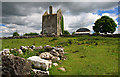 M4716 : Castles of Connacht: Lavallyconnor, Galway (2) by Mike Searle