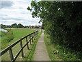 NZ3210 : Teesdale Way approaching Neasham by Chris Heaton