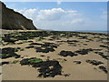 TR2169 : Foreshore between Reculver and Beltinge by E Gammie