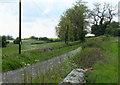 ST8079 : 2010 : Heading west on a lane near Burton by Maurice Pullin