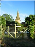 TR1859 : Fordwich church spire by E Gammie