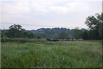 TG2105 : Railway bridge over the River Yare by N Chadwick
