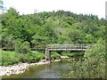 NY6761 : Footbridge over the River South Tyne by Mike Quinn