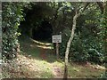 SW8532 : Junction of paths north west of Bohortha by Neil Theasby