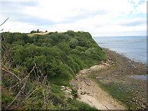 TA0197 : The North Sea near Hayburn Wyke by Philip Barker