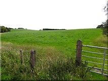H5575 : Streefe Townland by Kenneth  Allen