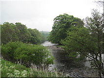 NY9625 : River Tees by Les Hull