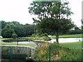 O2129 : Ornamental lake in Blackrock Park by Eric Jones