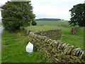 SK0664 : Milepost on the road to Longnor by Peter Barr