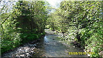 SS8983 : Llynfi river, just before it joins Ogmore river, Aberkenfig by Colin Prosser