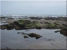 TA0487 : Exposed rocks in South Bay by John S Turner