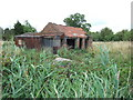 TF4908 : Small derelict barn, Wilkins' Road, Wisbech by Richard Humphrey