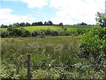 C0508 : Treankeel Townland by Kenneth  Allen