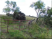 C0408 : Tullyhonour Townland by Kenneth  Allen