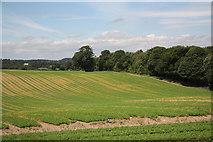 SK5853 : Appleton Dale by Richard Croft