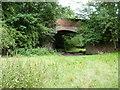 SJ2522 : Old railway bridge at Llanyblodwel by Richard Law