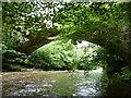 SJ2522 : Bridge over the Afon Tanat by Richard Law