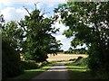 SP2874 : Hollis Lane near Dunns Pitts Farm by John Brightley