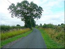 SO7729 : Mill Lane by Jonathan Billinger