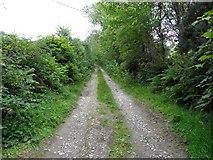 C1208 : Lane, Newmills by Kenneth  Allen
